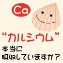 2015.08_carusium
