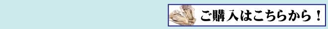 牡蠣の恵み